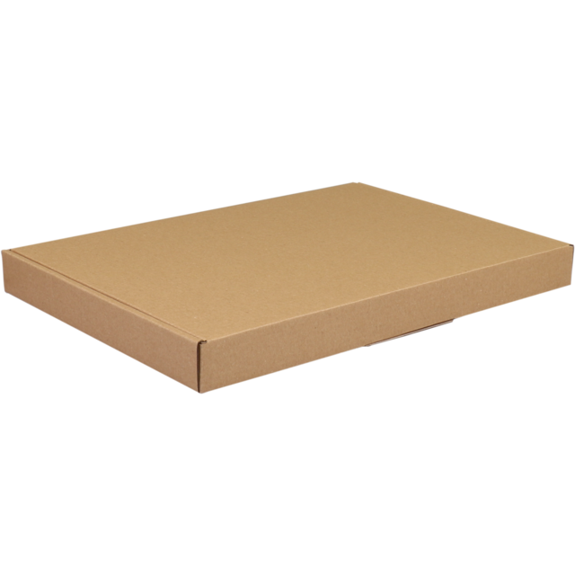 SendProof Fits through letterbox - box, 310x220x27mm, brown 1