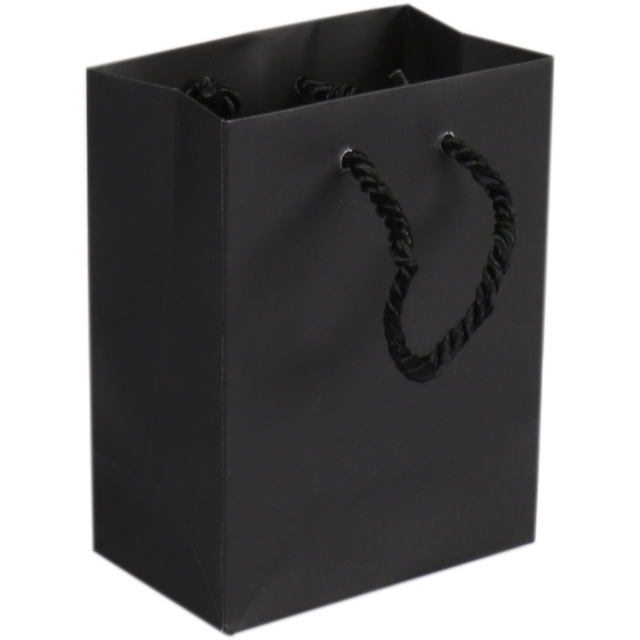 Bag, Art paper, deluxe bag with cord, 11x6.5x14.5cm, carrier bag, black 1