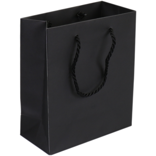 Bag, Art paper, deluxe bag with cord, 16x8x19cm, carrier bag, black 1