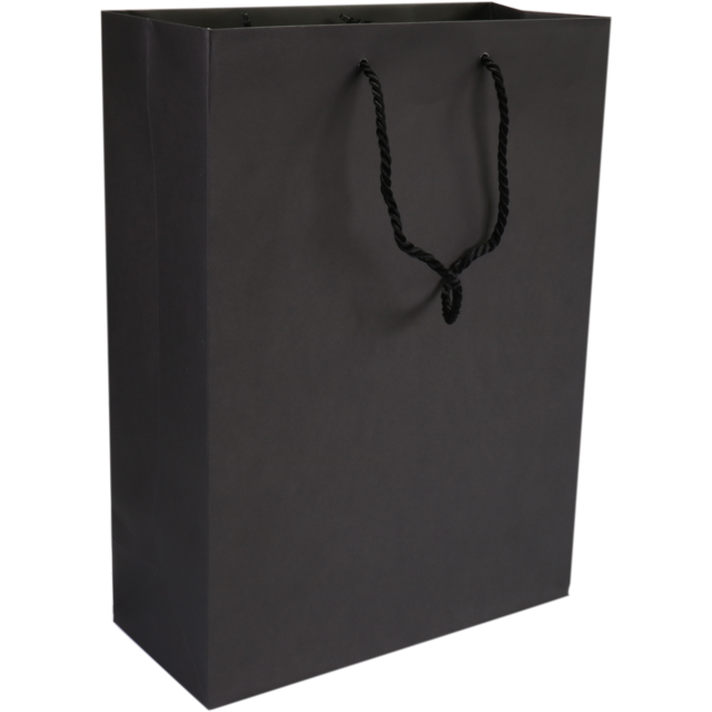 Bag, Art paper, deluxe bag with cord, 27x12x37cm, carrier bag, black 1