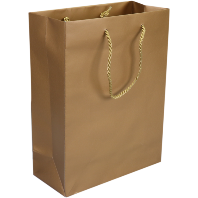 Bag, Art paper, deluxe bag with cord, 22x10x29cm, carrier bag, gold 1