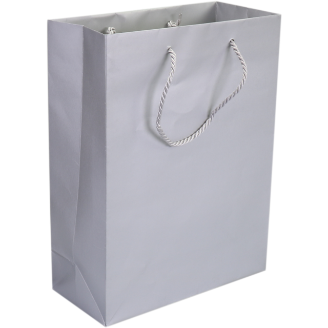 Bag, Art paper, deluxe bag with cord, 22x10x29cm, carrier bag, silver 1