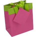 Bag, Art paper, deluxe carrier bag with ribbon, 12.5x7.5x13.5cm, carrier bag, fuchsia/Green